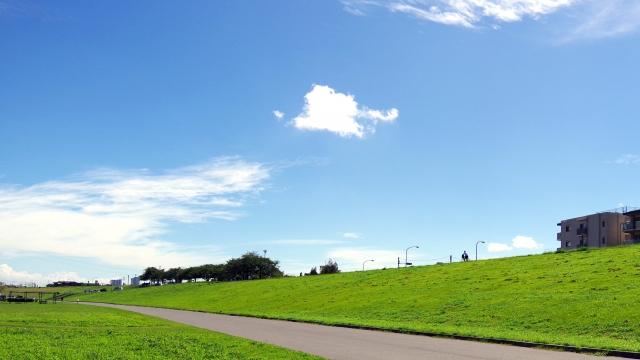 江戸川区 公園